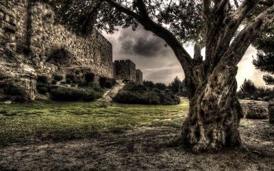 Walls of Jerusalem 3