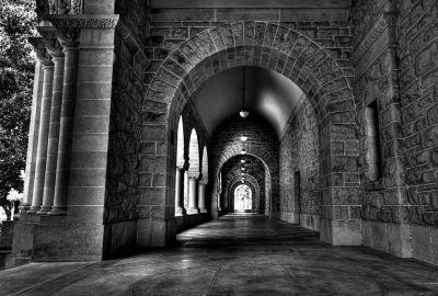 Stanford University 1