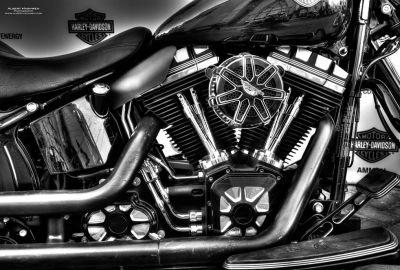 Harley Davidson Aqaba Event May2015 -3